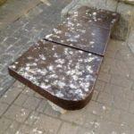 Brudzenie miejskich chodników wciąż bezkarne