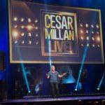 Cesar Millan i psy w nowym programie na kanale Nat Geo People
