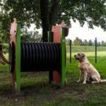 Rusza strefa treningowa dla psów w Porcie Łódź