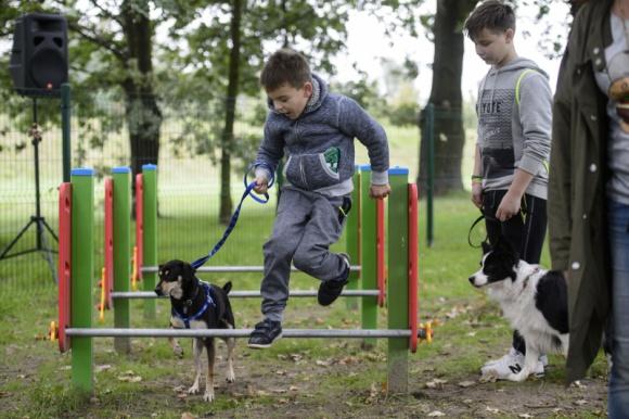Przekonaj się ile potrafi Twój pies! Zwierzęta Spotkanie z psim behawiorystą w Porcie Łódź