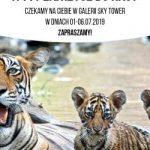 WWF Polska w Sky Tower: razem dla ochrony środowiska